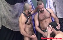 Strong bears dicksucking and toy analplay