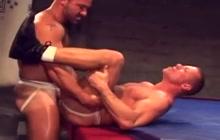 Bears wrestling before fucking
