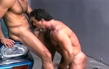 Beefy studs sucking dick