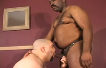 Interracial gay lovers pleasing each other