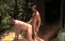 Gay bear workers have sex outdoor