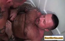 2 horny bears having anal sex